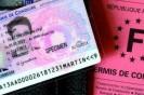 Carte grise et permis de conduire Depuis le 2 novembre la préfecture n'accueille plus le public